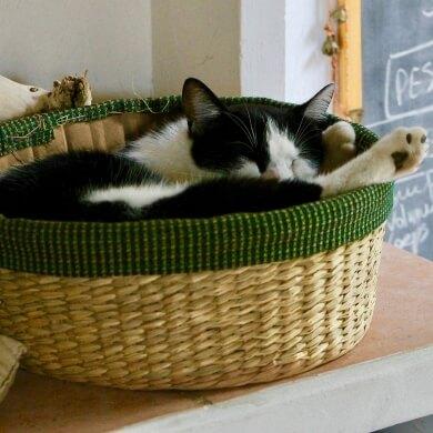 cestas cestos canastos capazos accesorios muebles